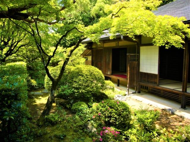 年配者が好きそうな日本庭園の様子