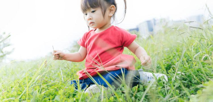 小さな子どもが庭で遊んでいる写真