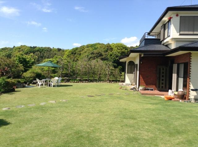 自宅に張ってある天然芝