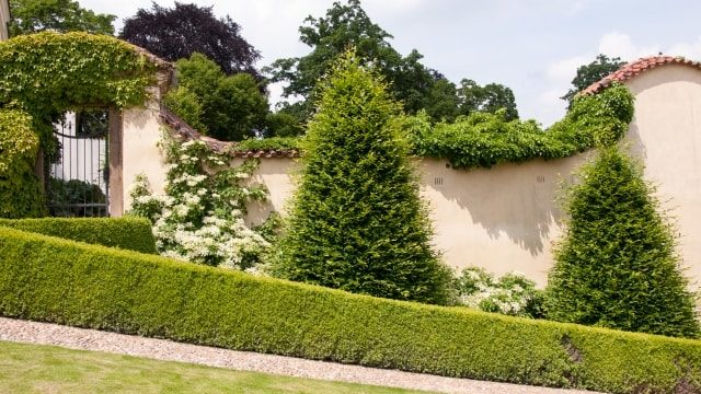 玄関前をきれいな植栽で彩っているご自宅